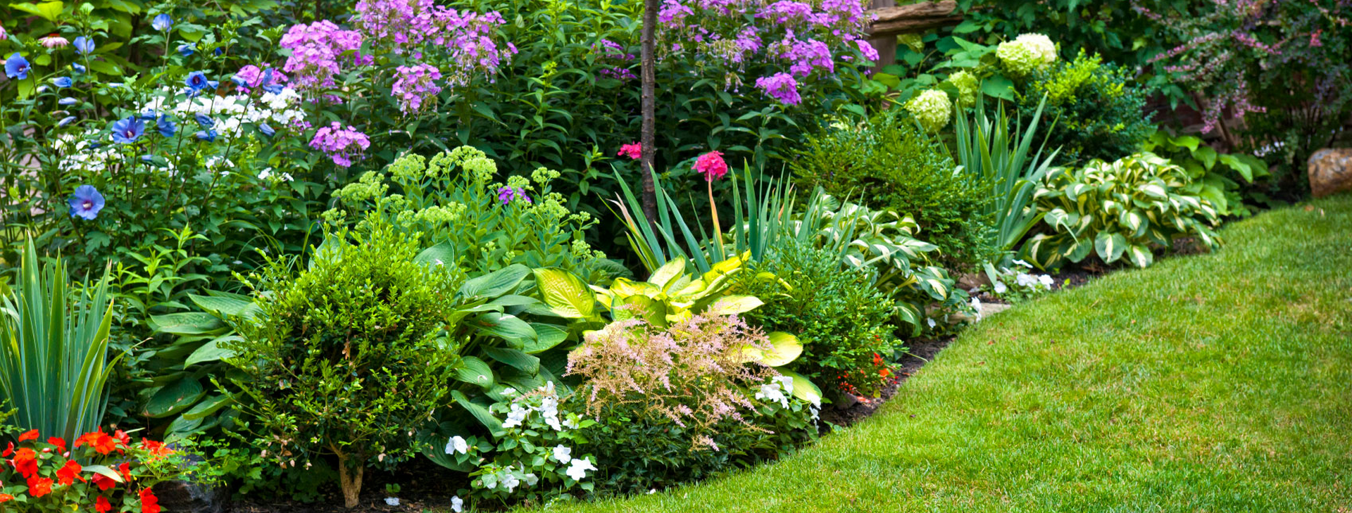 Your lawn and landscape<br /> the way that it should